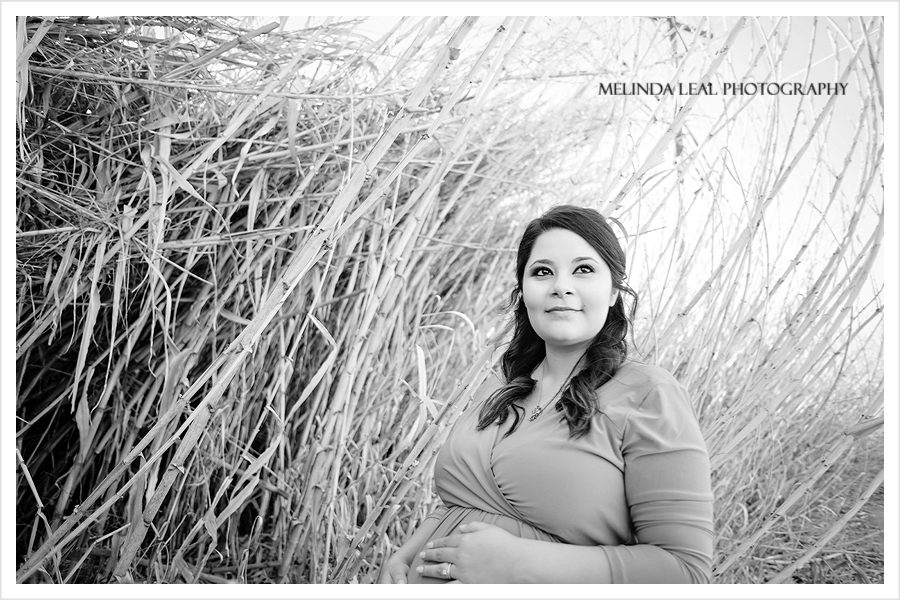 maternity photos, maternity pictures, maternity photography, portrait photography, dallas photographer, dallas senior photographer, ft. worth photographer, ft. Worth senior photographer